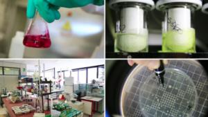 gem-chimica-laboratori