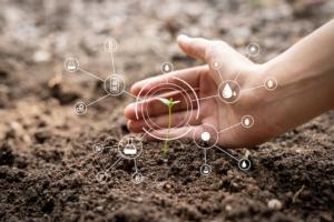 germoglio-agricoltura-tecnologie-digitali-icone-by-suphachai-adobe-stock-750x500