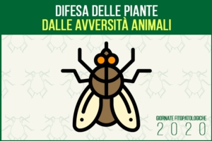 La difesa delle piante dalle avversità animali