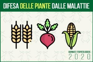 gf2020-difesa-piante-malattie-fonte-agronotizie