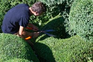 giardiniere-tecnico-del-verde-by-pictures-news-fotolia-750