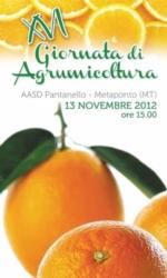 gioranta-agrumicoltura-novembre-2012-alsia