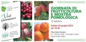 giornata-frutticoltura-covip-giannoccaro-23062012