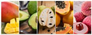 giornata-frutticoltura-specie-tropicali-20200219-fonte-irritec-750x287