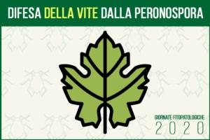 giornate-fitopatologiche-2020-difesa-vite-peronospora-fonte-agronotizie