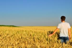 giovane-agricoltore-campo-grano-agricoltura-by-artvor-adobe-stock-750x497