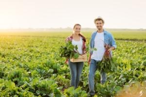 giovani-agricoltori-barbabietole-by-pixel-shot-adobe-stock-750x500