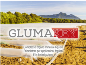 Aumenta il grado Brix con Gluma Key - Euro TSA - Fertilgest News