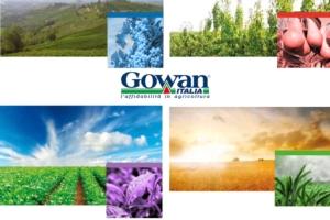 gowan-catalogo-fungicidi-erbicidi-vari-insetticidi-2019web