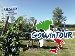 gowintour-fonte-gowan