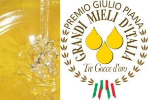 grandi-mieli-italia-concorso-by-osservatorio-nazionale-miele-jpg