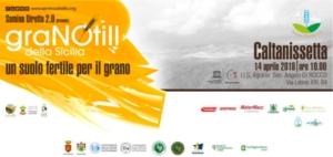 GraNOtill della Sicilia: un suolo fertile per il grano - Plantgest news sulle varietà di piante