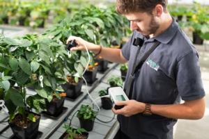 green-has-italia-studi-piante-fonte-green-has-italia