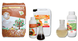 La nutrizione delle piante secondo Grena - Grena - Fertilgest News