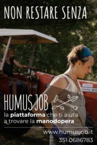 humus-job