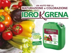 Idro K Grena: potassio e poliammine, accoppiata vincente - colture - Fertilgest