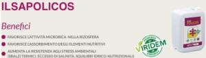 """Ilsapolicos, il """"bioattivatore"""" delle radici"""