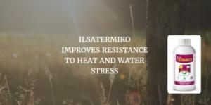 ilsatermiko-resistenza-fonte-ilsa