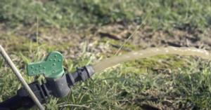 Impianto di microirrigazione: come pulire le linee erogatrici