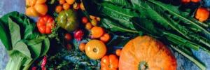in-viaggio-verso-lagrobiodiversita-2019102-fonte-festival-agricoltura