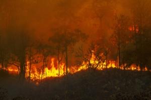 incendi-incendio-fuoco-by-toa555-adobe-stock-750x500
