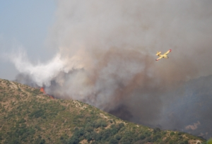 incendio-canadair-by-stegrifo27-wikipedia-jpg