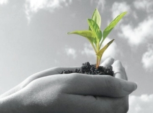 incontro-agricoltura-sostenibile-apoconerpo-23-novembre-2012