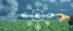 InnovaInAzione, il webinar per parlare del futuro dei campi