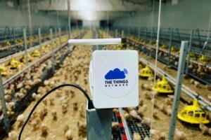 Connettività in campo, liberalizzate le frequenze per l'IoT
