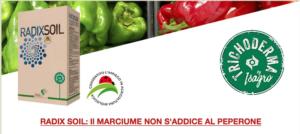 Radix<sup>®</sup> Soil: stop alla fitoftora del peperone