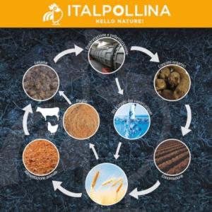 L'economia circolare in agricoltura: una sfida per un futuro più sostenibile - Fertilgest News