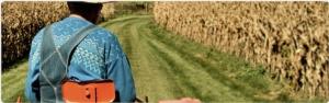 job-in-country-portale-lavoro-agricolo-coldiretti