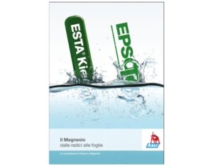 k-s-brochure-magnesio