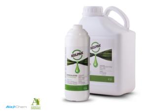 Produttività e crescita delle piante, la risposta è Kelpak<sup>®</sup> - le news di Fertilgest sui fertilizzanti