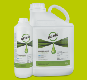 Kelpak<sup>®</sup> per migliorare la qualità dell'uva da tavola - le news di Fertilgest sui fertilizzanti