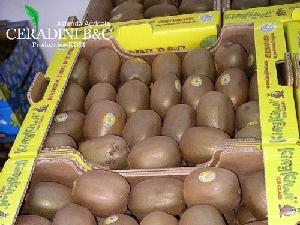 king-kiwi-giallo-ceradini-plateau-actinidia-500-bykingkiwi_com