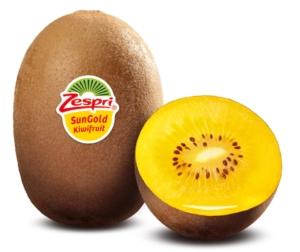 kiwi-actinidia-zespri-sungold