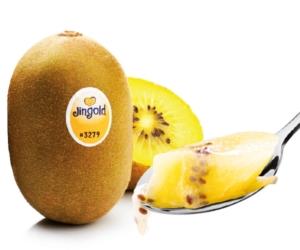 kiwi-giallo-fonte-jingold