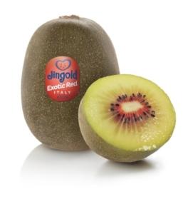 kiwi-rosso-fonte-jingold-20201005-400
