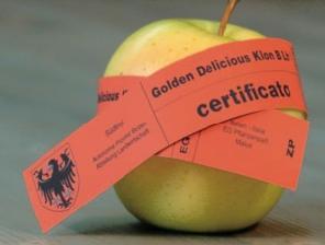 ksb_mela_certificazione_20081024