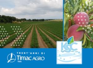 ksc-orticole-frutticole-fonte-timac-agro