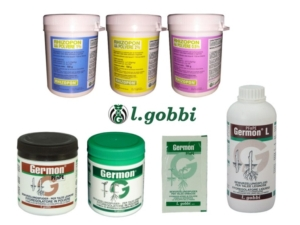 l-gobbi-rhizopon-germon