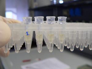 laboratorio-ricerca-batterio-soluzioni-byflicrkcc20-kaibara87