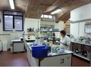 laboratorio-universita-milano-articolo-ottobre-mario-rosato1