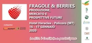 lameta-fragole-berries-20200116-lameta