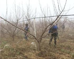lavoratori-nei-campi