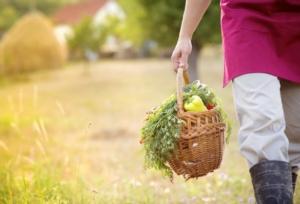 lavoro-agricolo-giovani-agricoltori-agricoltore-pojoslaw-fotolia-750