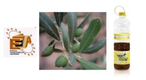 Non dire olive finché non le hai al frantoio