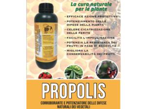 Fatto dalle api, confezionato dall'uomo - L.E.A. - Fertilgest News