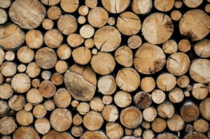 legna-legno-tronchi-by-ipictures-fotolia-750